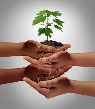 Défendre la cause écologique avec le crowdfunding: Interview de l'association Citizencase