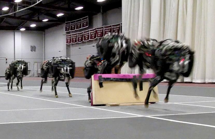 cheetah-robot le robot guépard du MIT capable de sauter à travers des obstacles de 40 cm.