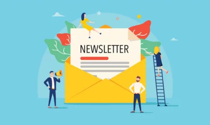 All You Need: la newsletter pour tous les juristes par la EDHEC Business School